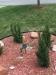 Irrigation-Poor-Backflow-Placement