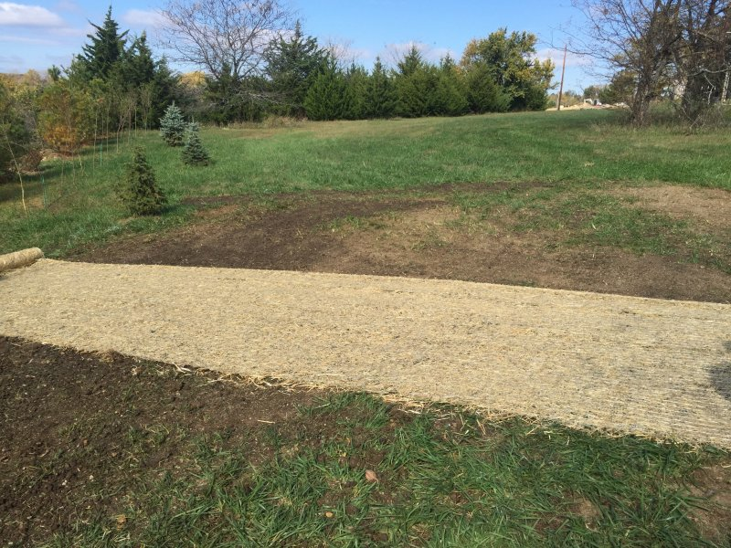 Public-Works-Lawn-Restoration-Grading-Seed-Fertilizer-Straw-Blanket-2