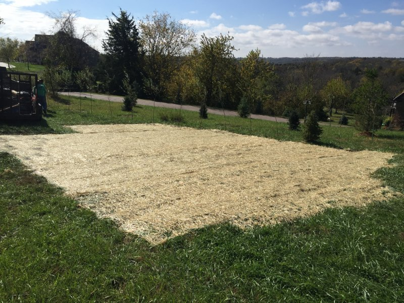Public-Works-Lawn-Restoration-Grading-Seed-Fertilizer-Straw-Blanket-4