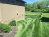 Lawn-6-Step-Fertilizer-Application-Example-2