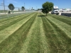 Lawn-Non-Irrigated-Commercial-Property