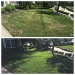 Lawn-Renovation-Before-After