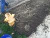 Public-Works-Lawn-Restoration-Grading-Seed-Fertilizer-Straw-Blanket-5