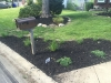 Front-Landscape-Rehab-at-Mailbox-After
