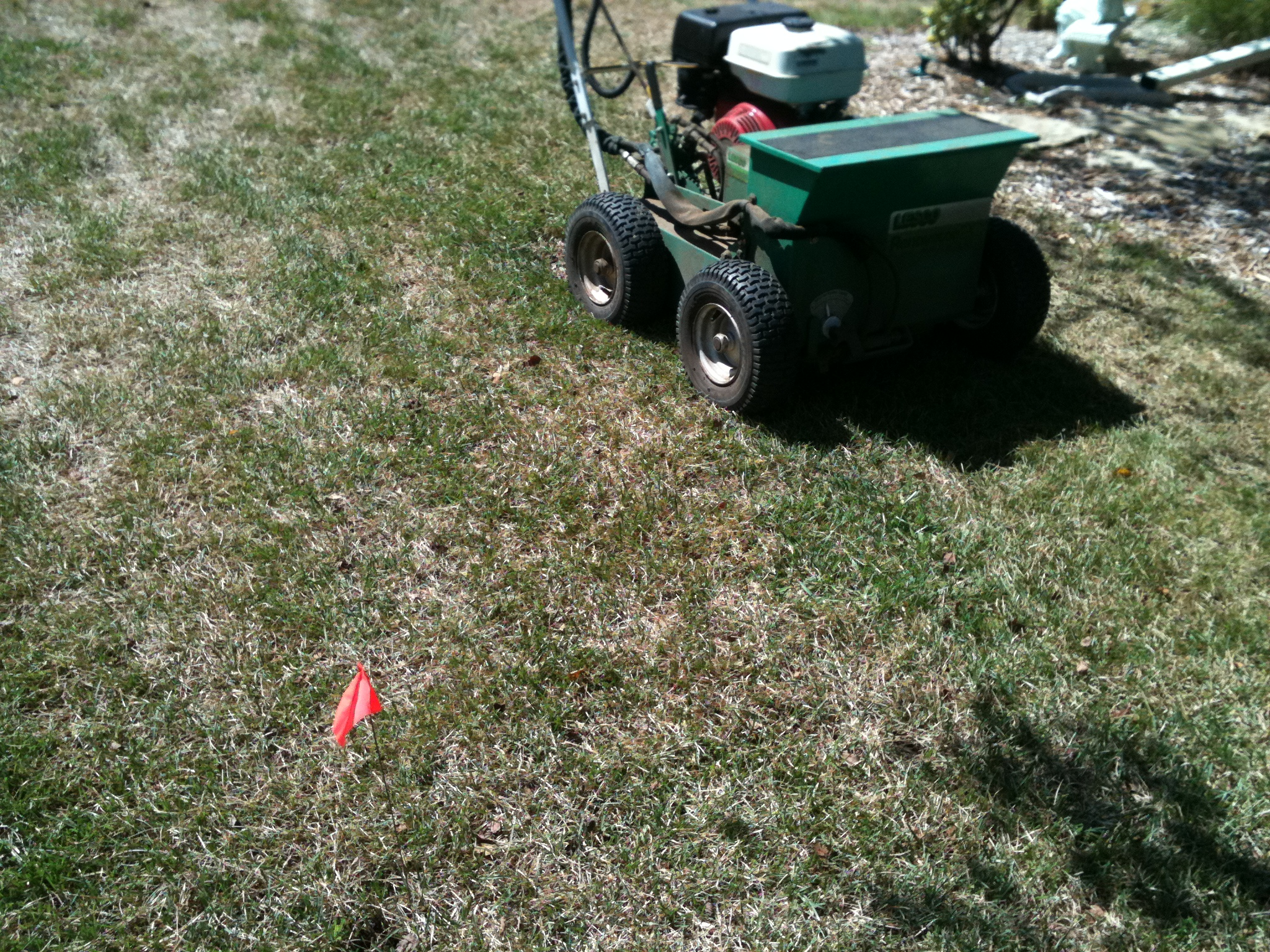 So You Want Your Yard Back Aerate Vs Verticut Overseed