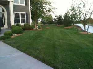 Lawn Mowing and Care in Olathe, Lenexa, Overland Park, Leawood, Shawnee, Mission, Merriam, Gardner, Spring Hill, Fairway, Prairie Village, Johnson County, Jo Co, Kansas