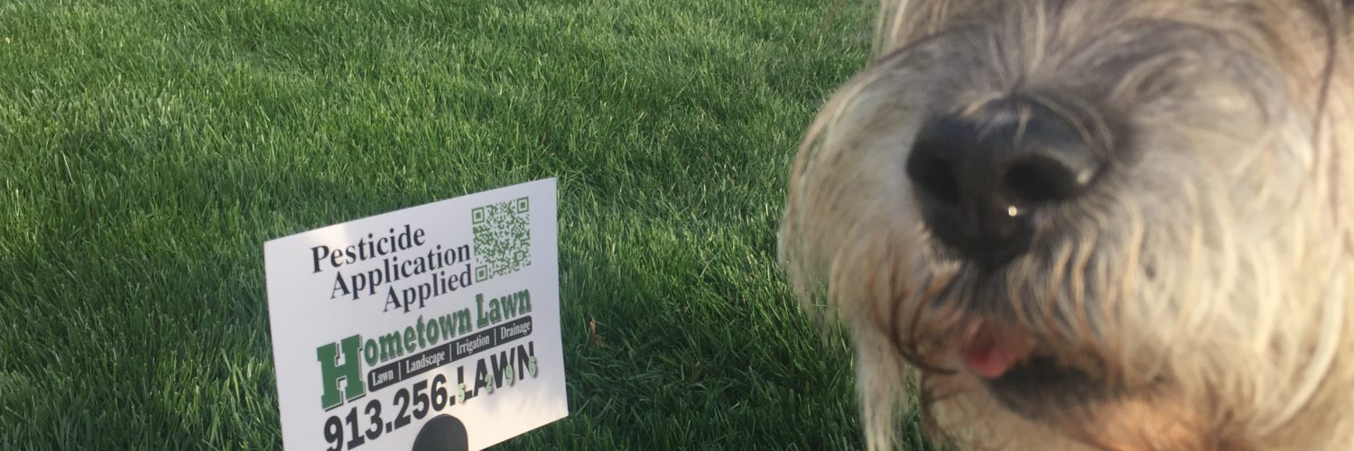 Hometown Lawn provides annual step fertilizer applications to turf grass to Gardner, Olathe, Overland Park, Leawood, Stilwell, Lenexa, Shawnee, Roeland Park, Merriam, Mission, Mission Hills