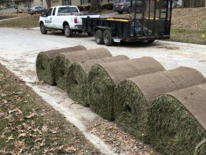 lawn service sod